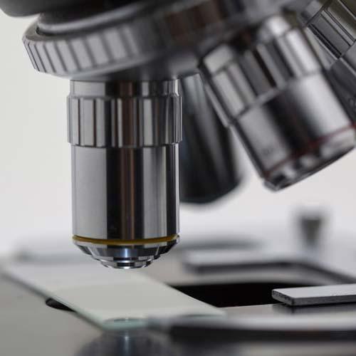 Il ruolo del biologo